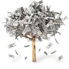 money tree1